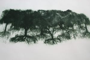 darker print forest