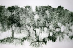 dissolving forest