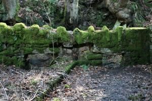 1306 mossy wall