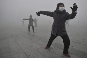 1306 smog