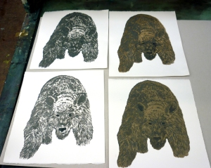 Bear test prints