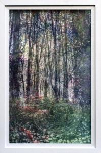 Woods v/e 2