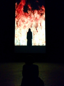 Bill Viola - Fire Woman