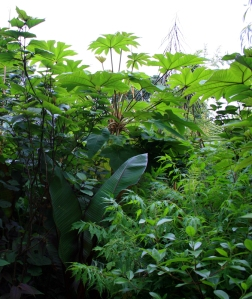 1407 Henstead Garden 2