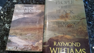 1408 Raymond Williams