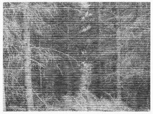 Chrisitane Baumgartner Wood near Colditz