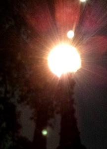 1510 light