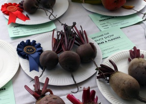 1510 Widecombe Fair beetroot