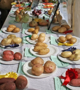Widecombe Fair Prize Vegetables