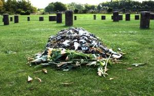1510 Wood Henge grave