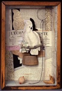 1601 Jospeh Cornell A Parrot For Juan Gris