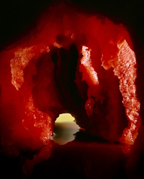 1602 Nadege Meriau Grotto
