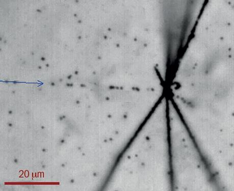 1603 anti proton imaging.jpg