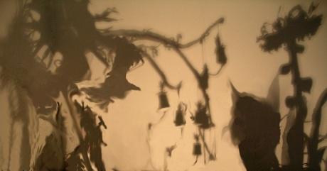 1701-shadows