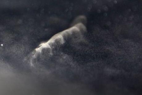 1704 Cosmic Trail 3