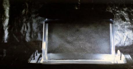 1709 cloud chamber