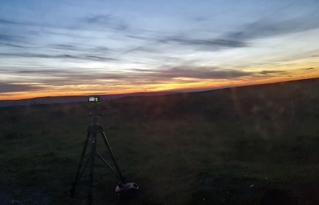 1806 live streaming sunset
