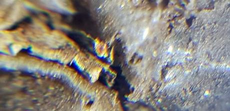 1903 microscope silver foil