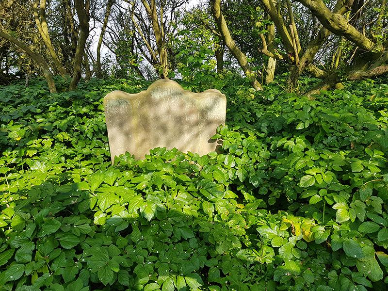 1904 the last grave Dunwich