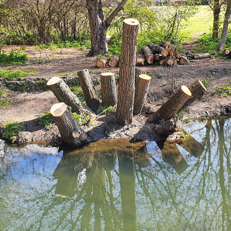 2008 stumpy4 (4)