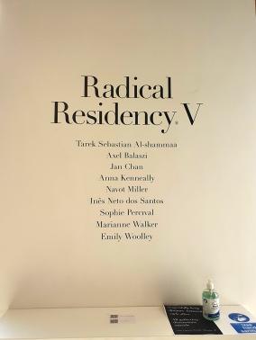 2009 Radical Residency V 3