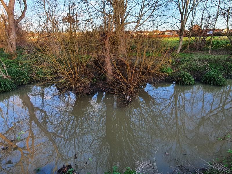 2012 stumpy