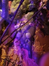 2012 Terra Nexus Emma Jane Whitton 2